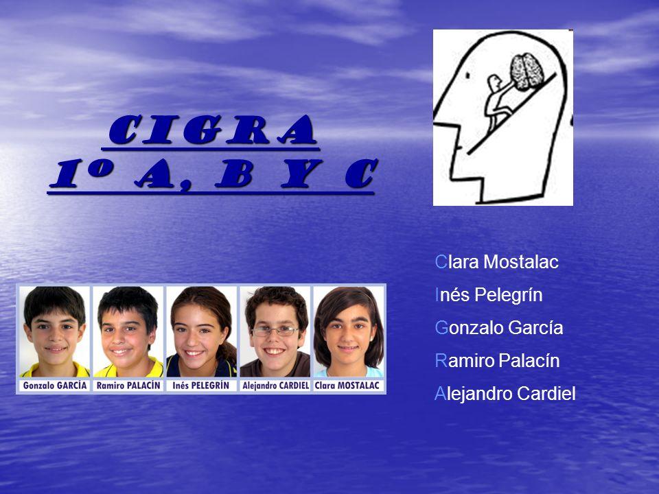 CIGRA 1º a, b y c Clara Mostalac Inés Pelegrín Gonzalo García Ramiro Palacín Alejandro Cardiel