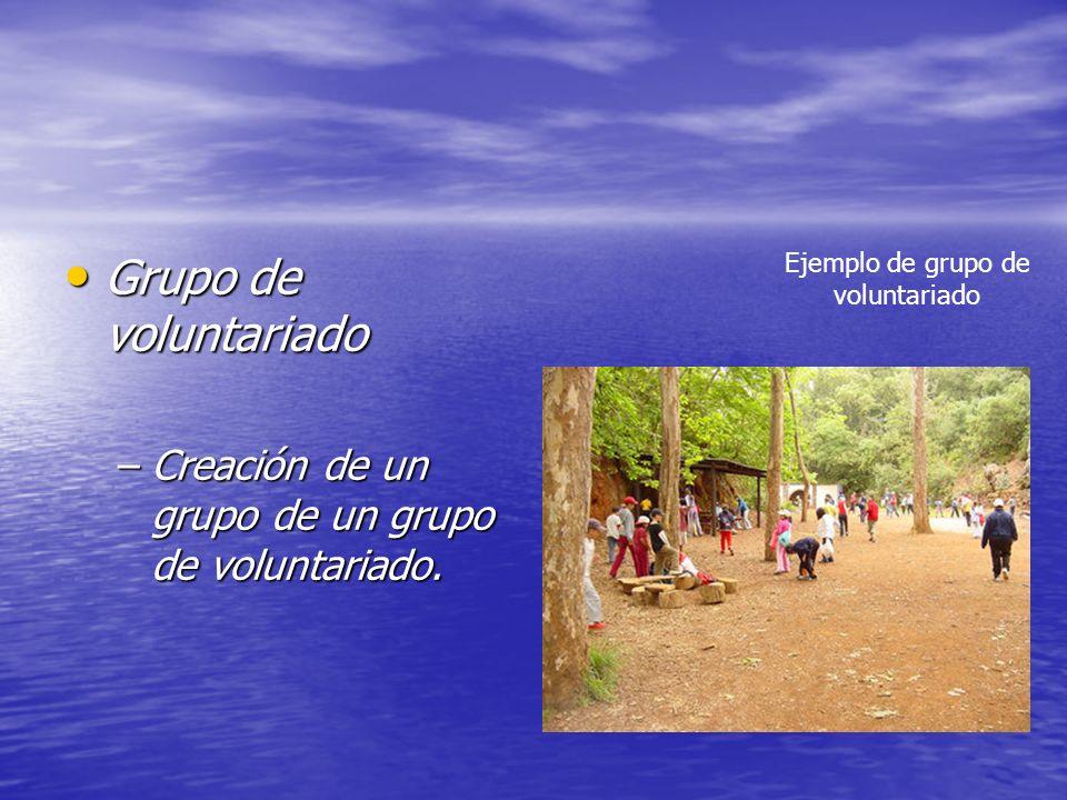 Grupo de voluntariado Grupo de voluntariado –Creación de un grupo de un grupo de voluntariado. Ejemplo de grupo de voluntariado