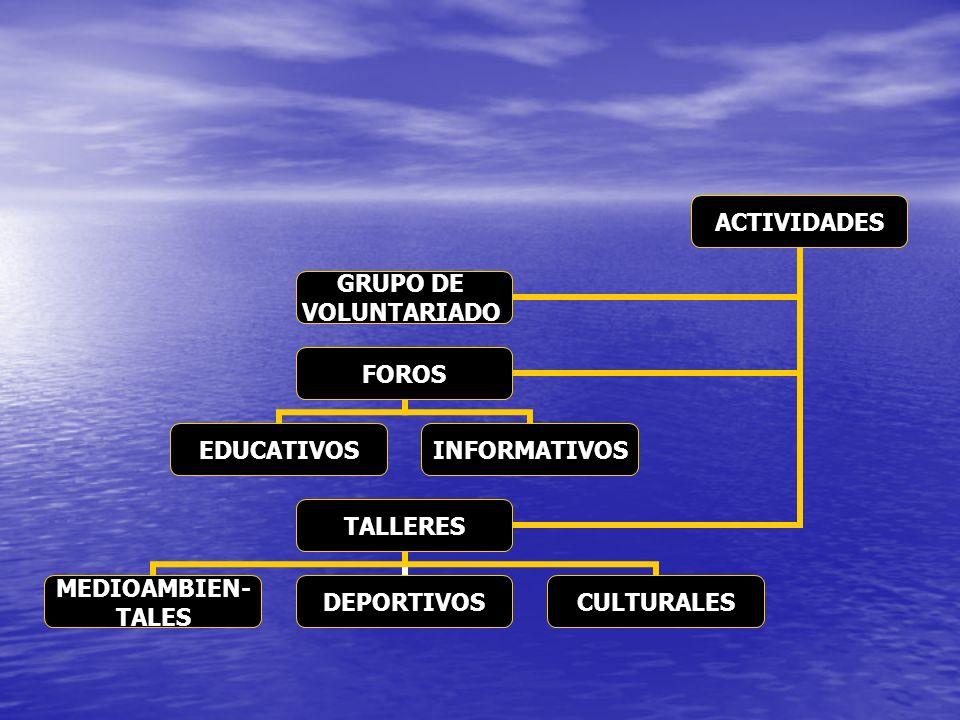 ACTIVIDADES GRUPO DE VOLUNTARIADO FOROS EDUCATIVOSINFORMATIVOS TALLERES MEDIOAMBIEN- TALES DEPORTIVOSCULTURALES