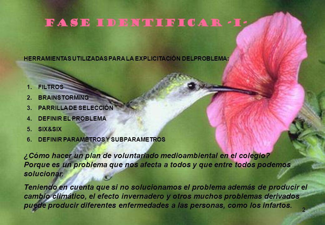 2 FASE IDENTIFICAR -I- HERRAMIENTAS UTILIZADAS PARA LA EXPLICITACIÓN DELPROBLEMA: 1.FILTROS 2.BRAINSTORMING 3.PARRILLA DE SELECCIÓN 4.DEFINIR EL PROBL