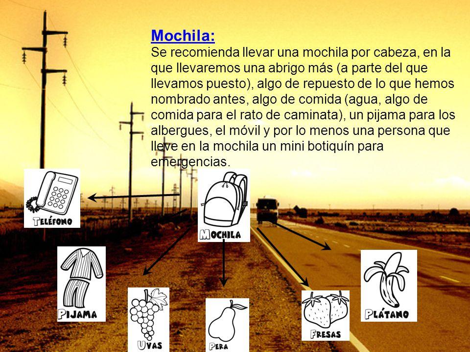 Mochila: Se recomienda llevar una mochila por cabeza, en la que llevaremos una abrigo más (a parte del que llevamos puesto), algo de repuesto de lo qu