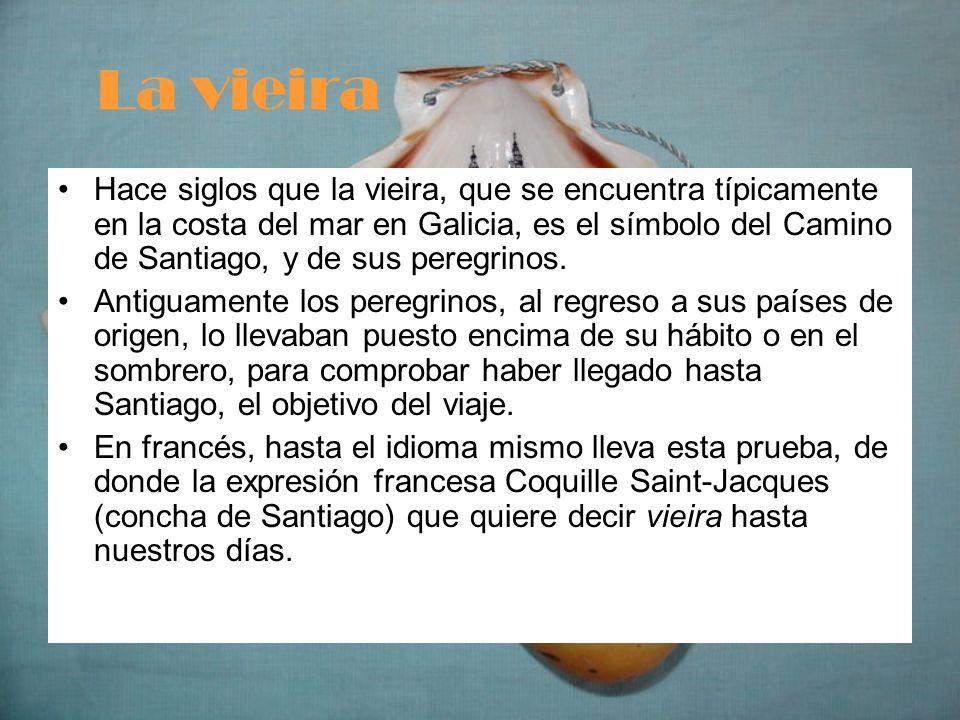La vieira Hace siglos que la vieira, que se encuentra típicamente en la costa del mar en Galicia, es el símbolo del Camino de Santiago, y de sus pereg