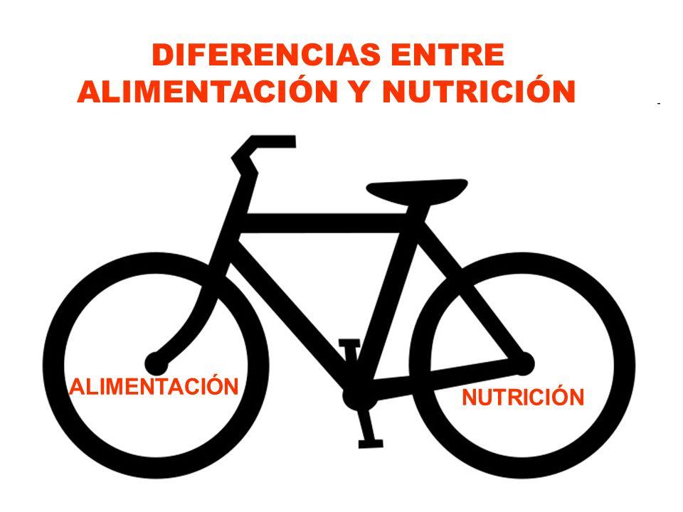 ALIMENTACIÓN NUTRICIÓN DIFERENCIAS ENTRE ALIMENTACIÓN Y NUTRICIÓN