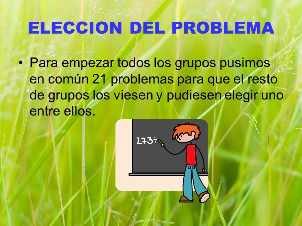 ELECCION DEL PROBLEMA Para empezar todos los grupos pusimos en común 21 problemas para que el resto de grupos los viesen y pudiesen elegir uno entre ellos.