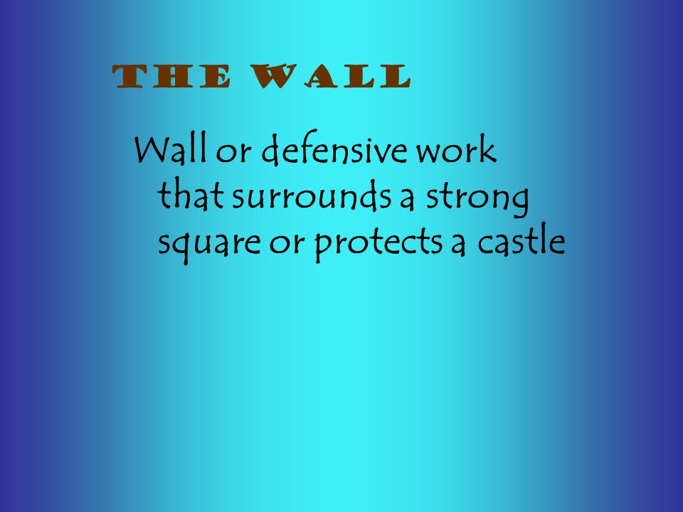 Wall or defensive work that surrounds a strong square or protects a castle THE WALL