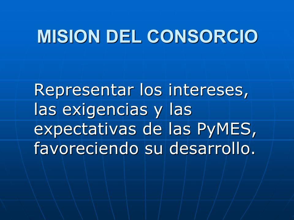 CONSORCIOS DE PROMOCION Estructura de servicios para: Asistencia legal, financiera y administrativa.