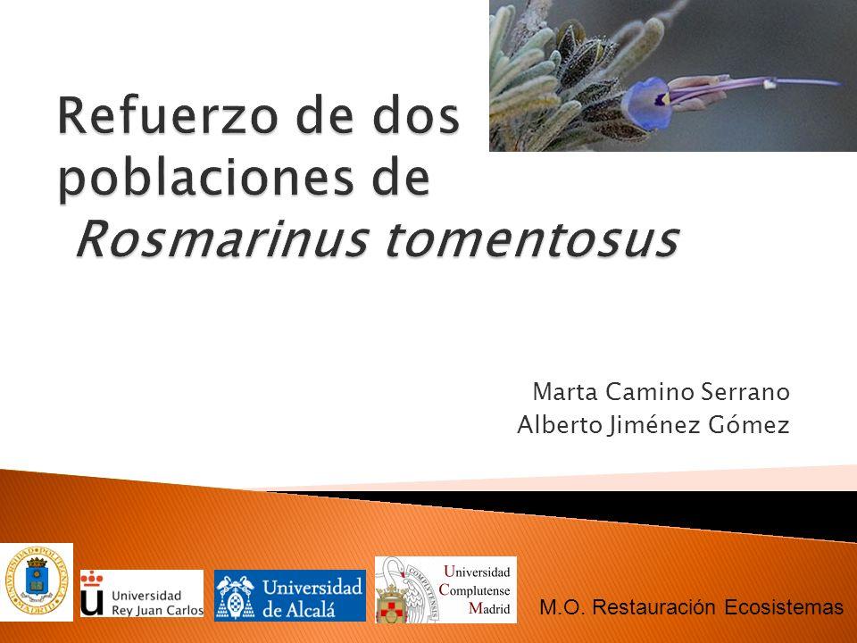 Libro Rojo 2000 de la Flora Vascular Española Libro Rojo 2008 de la Flora Vascular Española Libro Rojo de la Flora Silvestre Amenazada de Andalucía Poblaciones en peligro: Viabilidad de la Flora Vascular Amenazada de España (2008) http://www.juntadeandalucia.es/medioambie nte/ http://www.juntadeandalucia.es/medioambie nte/ http://www.marm.es/portal/secciones/biodiv ersidad/ http://www.marm.es/portal/secciones/biodiv ersidad/