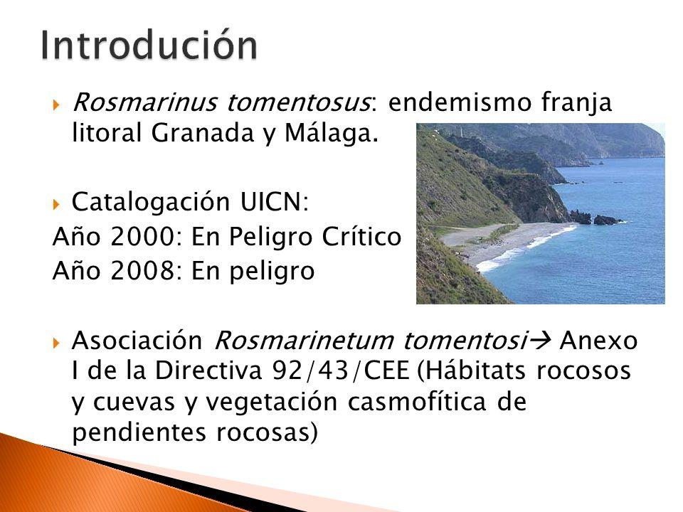 Distribución 1981: 5 poblaciones en Granada 2008: 5 poblaciones en Granada y Málaga MÁLAGA GRANADA