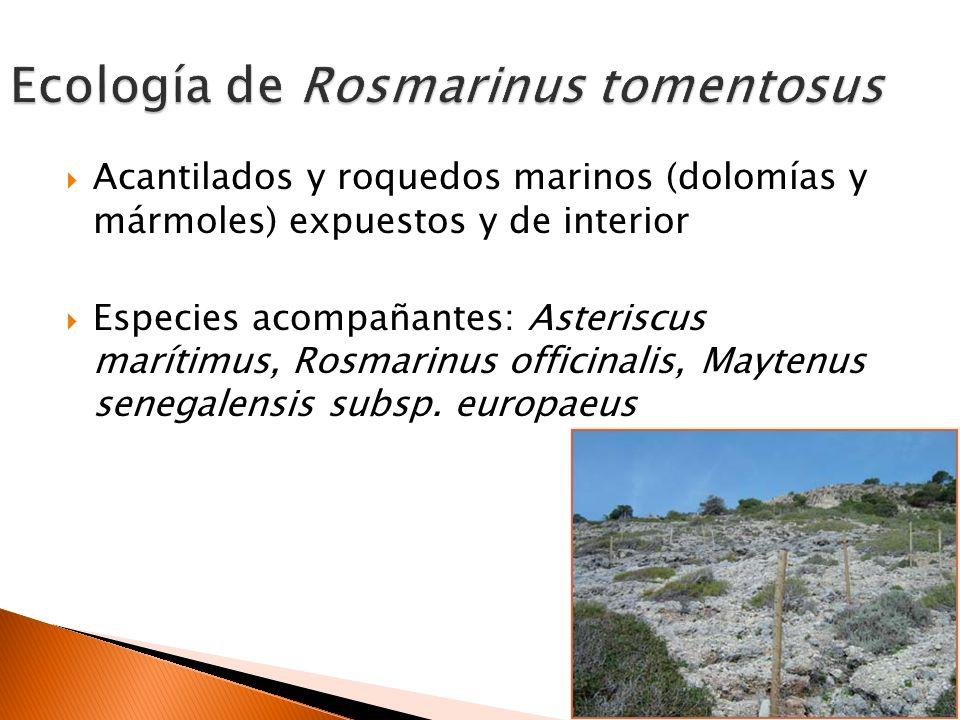 Construcción de carreteras Urbanizaciones Turismo Escombreras Especies exóticas invasoras Hibridación con R.