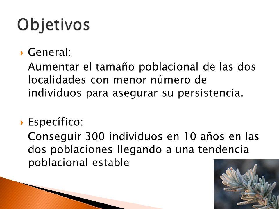 Variabilidad genética interpoblacional: ¿Mezcla de material genético de todas las poblaciones o sólo de las más afines.