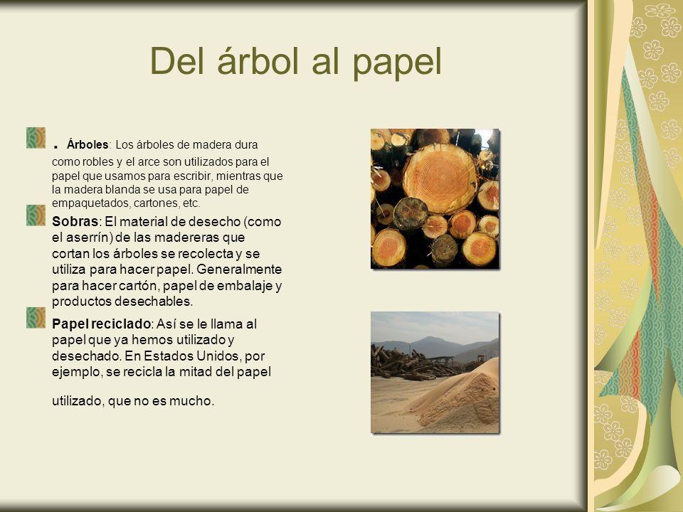 Del árbol al papel. Árboles: Los árboles de madera dura como robles y el arce son utilizados para el papel que usamos para escribir, mientras que la m