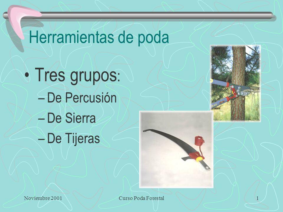 Noviembre 2001Curso Poda Forestal1 Herramientas de poda Tres grupos : –De Percusión –De Sierra –De Tijeras