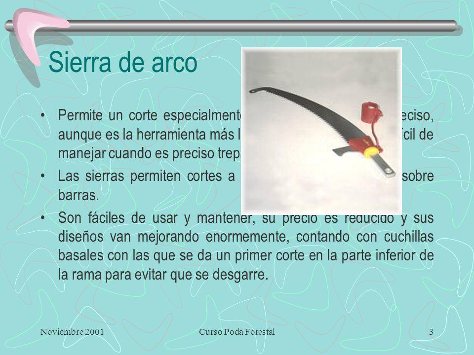 Noviembre 2001Curso Poda Forestal2 El Hacha Ventajas –Puede producir cortes limpios y lisos. –Es económica y de sencillo mantenimiento –Existe bastant
