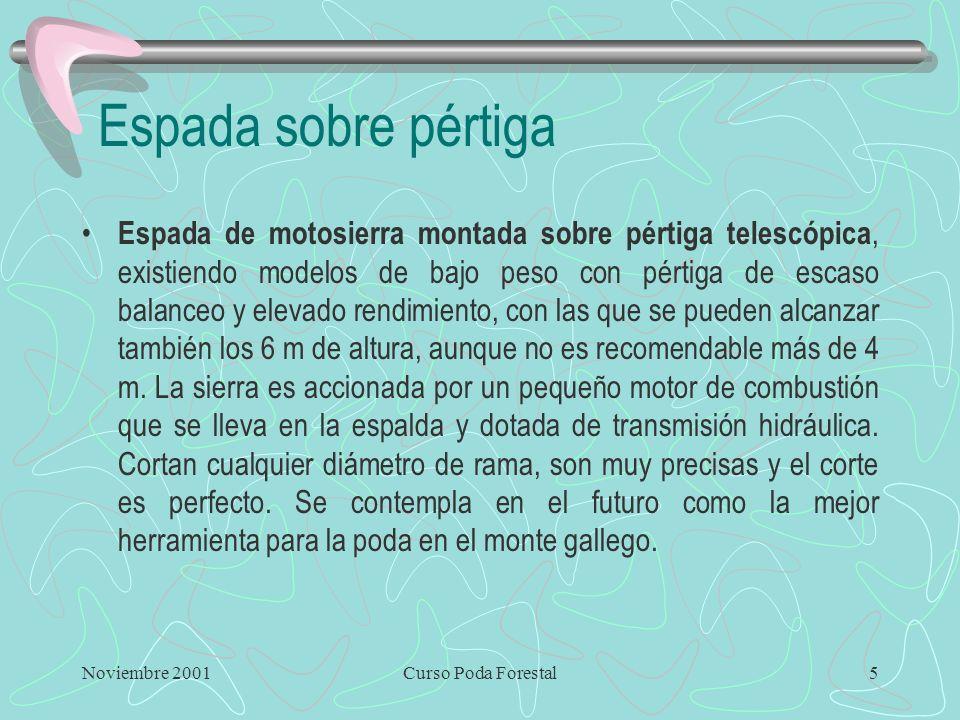 Noviembre 2001Curso Poda Forestal4 La motosierra Ventajas Permite realizar cortes todo el año con relativa independencia del estado vegetativo y sin g