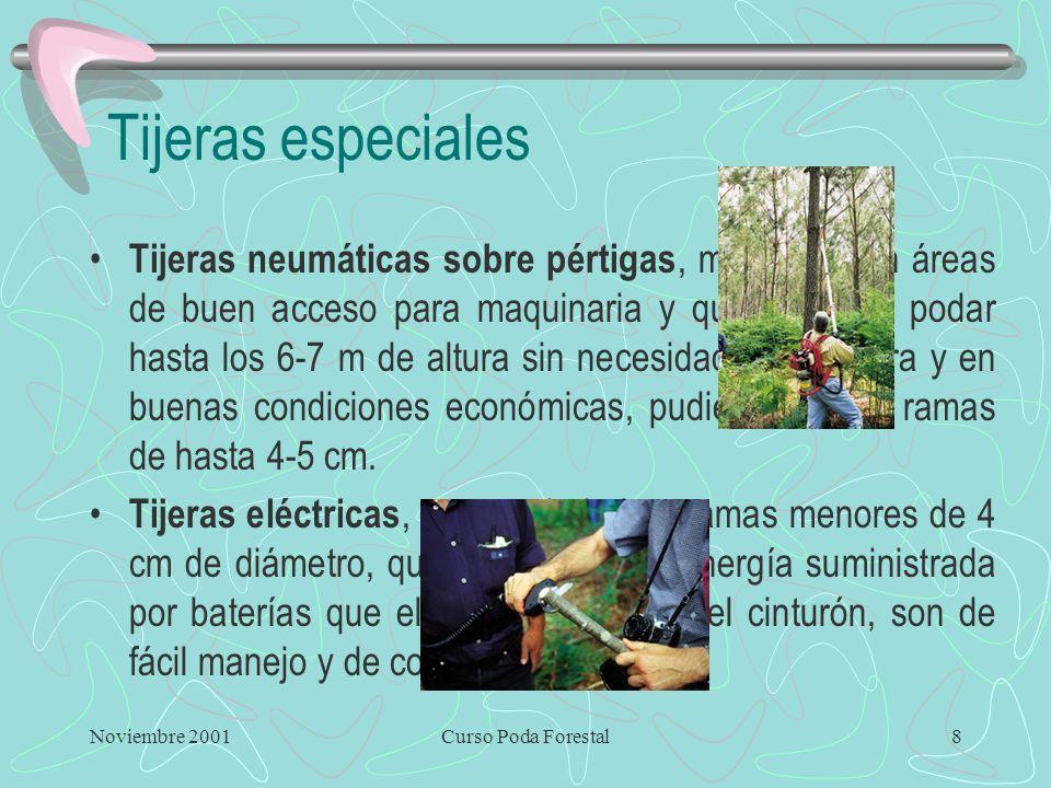 Noviembre 2001Curso Poda Forestal7 Tijeras Típicas de fruticultura y jardinería Fácil manejo y mantenimiento Inicialmente no servía para diámetro >2 c