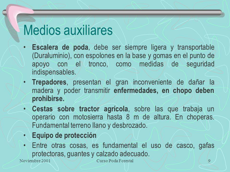 Noviembre 2001Curso Poda Forestal8 Tijeras especiales Tijeras neumáticas sobre pértigas, muy útiles en áreas de buen acceso para maquinaria y que perm