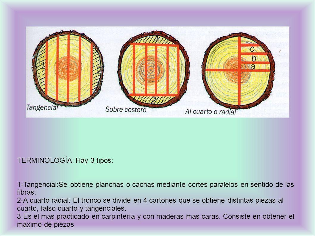 TERMINOLOGÍA: Hay 3 tipos: 1-Tangencial:Se obtiene planchas o cachas mediante cortes paralelos en sentido de las fibras.