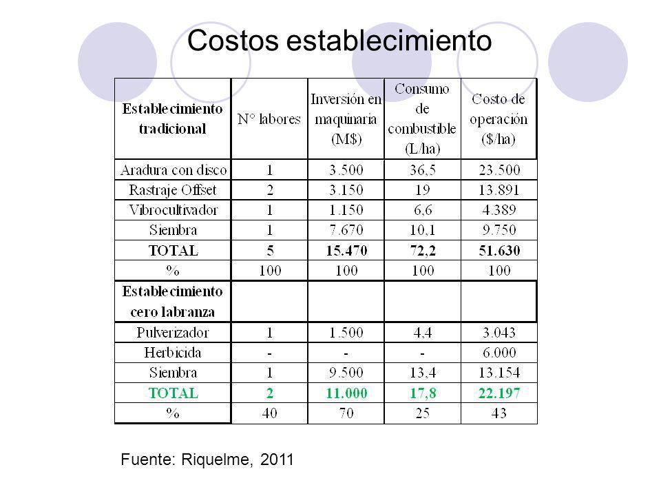 Costos establecimiento Fuente: Riquelme, 2011