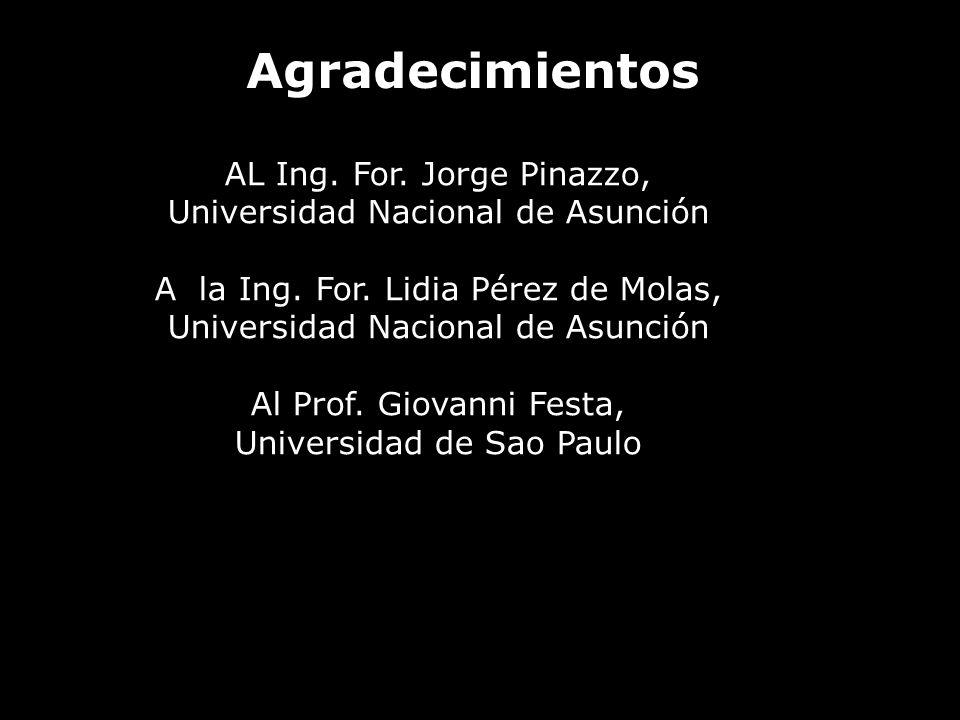 Agradecimientos AL Ing. For. Jorge Pinazzo, Universidad Nacional de Asunción A la Ing. For. Lidia Pérez de Molas, Universidad Nacional de Asunción Al