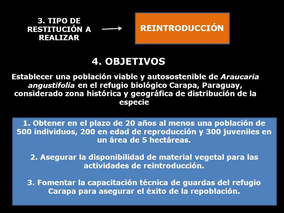 3. TIPO DE RESTITUCIÓN A REALIZAR REINTRODUCCIÓN 4. OBJETIVOS Establecer una población viable y autosostenible de Araucaria angustifolia en el refugio
