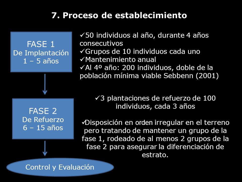 7. Proceso de establecimiento FASE 1 De Implantación 1 – 5 años 50 individuos al año, durante 4 años consecutivos Grupos de 10 individuos cada uno Man