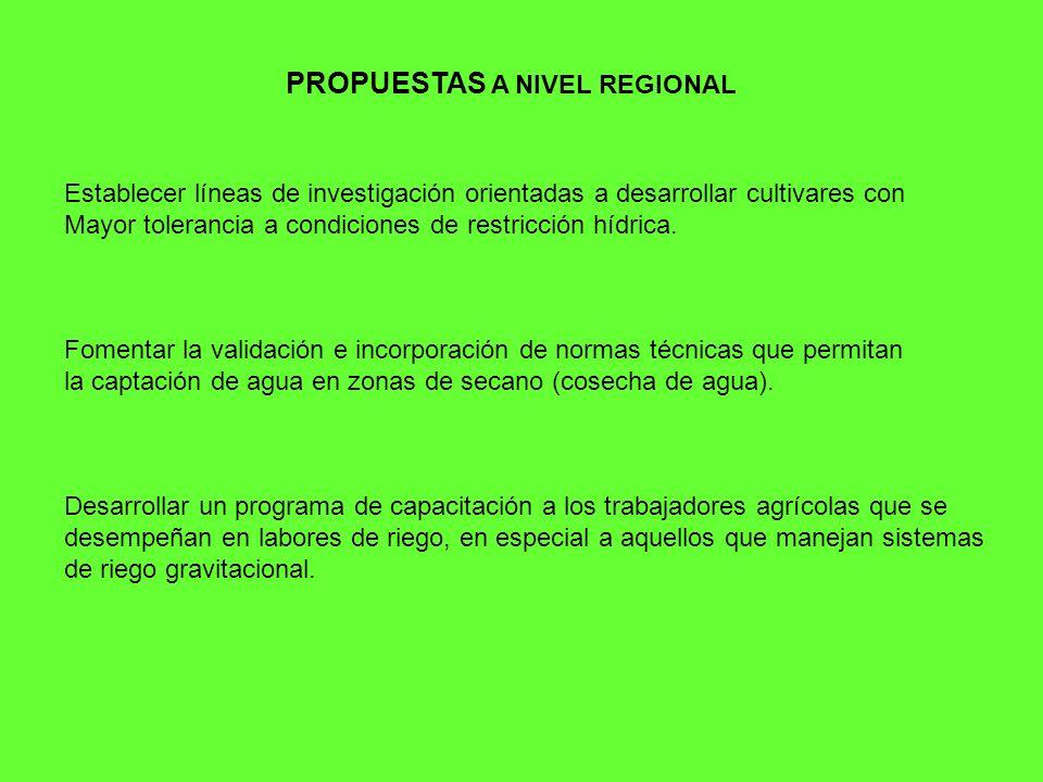 PROPUESTAS A NIVEL REGIONAL Establecer líneas de investigación orientadas a desarrollar cultivares con Mayor tolerancia a condiciones de restricción hídrica.