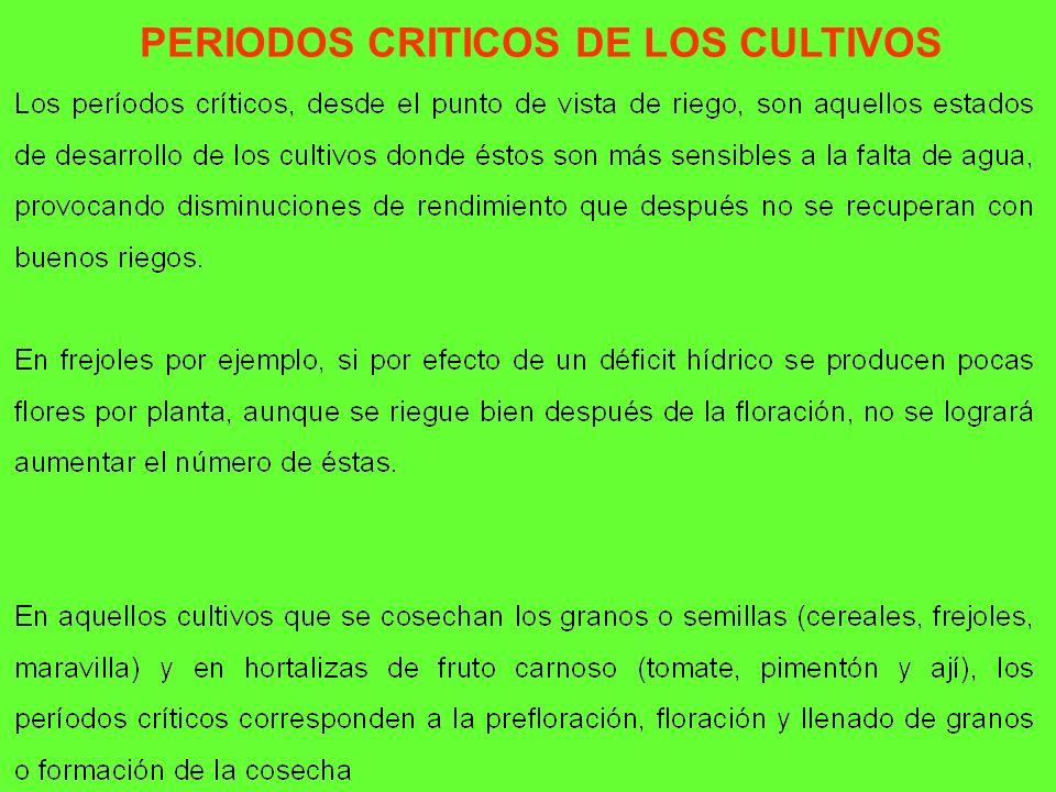 PERIODOS CRITICOS DE LOS CULTIVOS