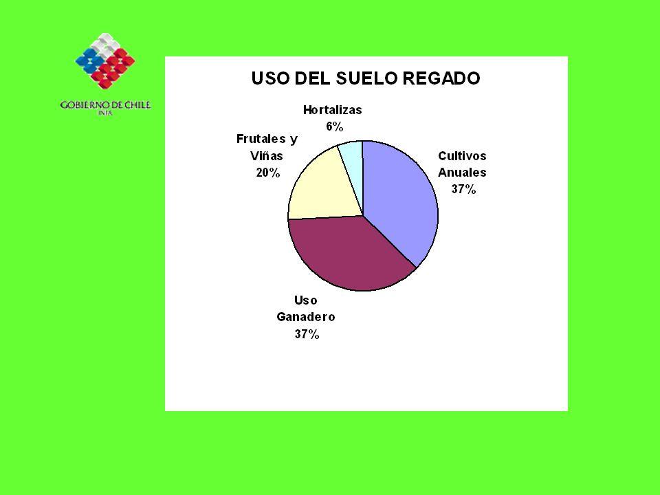 REGION DEL MAULE AREA REGADA AREA DE SECANO