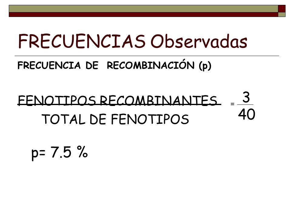 FRECUENCIAS Observadas FRECUENCIA DE RECOMBINACIÓN (p) FENOTIPOS RECOMBINANTES TOTAL DE FENOTIPOS 3 40 = p= 7.5 %