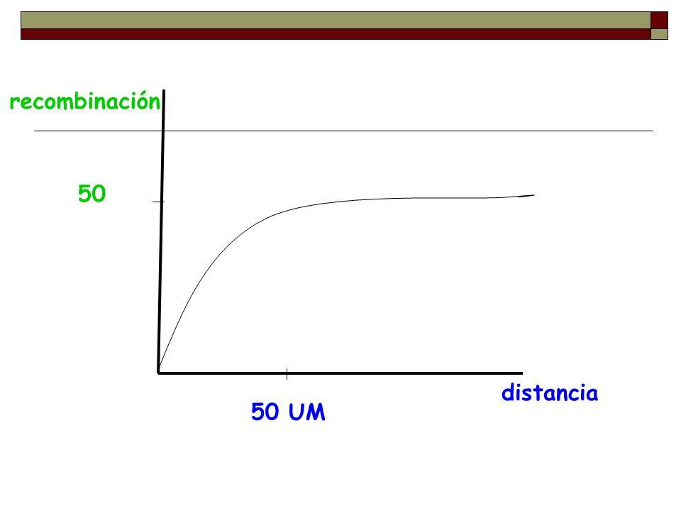 distancia recombinación 50 50 UM