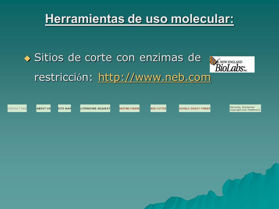 Herramientas de uso molecular: Sitios de corte con enzimas de restricci ó n: http://www.neb.com Sitios de corte con enzimas de restricci ó n: http://www.neb.comhttp://www.neb.comhttp://www.neb.com