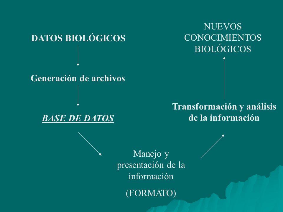 DATOS BIOLÓGICOS Generación de archivos BASE DE DATOS Manejo y presentación de la información (FORMATO) Transformación y análisis de la información NUEVOS CONOCIMIENTOS BIOLÓGICOS