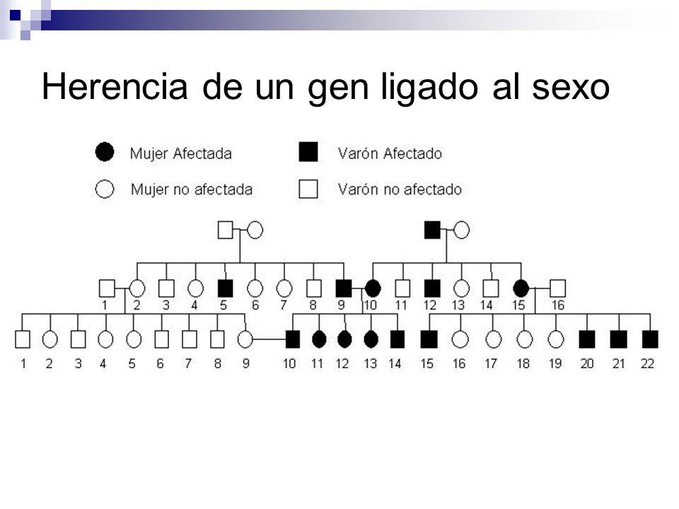 Herencia de un gen ligado al sexo