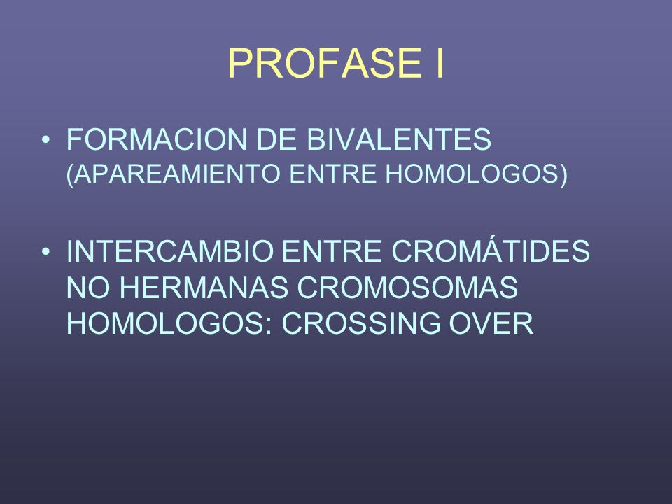 PROFASE I FORMACION DE BIVALENTES (APAREAMIENTO ENTRE HOMOLOGOS) INTERCAMBIO ENTRE CROMÁTIDES NO HERMANAS CROMOSOMAS HOMOLOGOS: CROSSING OVER