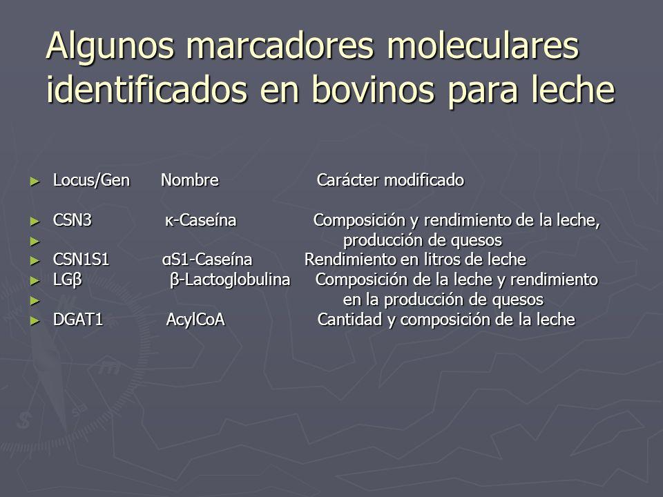 Locus/Gen Nombre Carácter modificado Locus/Gen Nombre Carácter modificado CSN3 κ-Caseína Composición y rendimiento de la leche, CSN3 κ-Caseína Composi