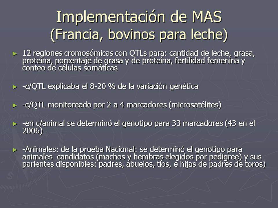 Implementación de MAS (Francia, bovinos para leche) 12 regiones cromosómicas con QTLs para: cantidad de leche, grasa, proteína, porcentaje de grasa y
