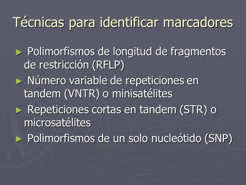 Técnicas para identificar marcadores Polimorfismos de longitud de fragmentos de restricción (RFLP) Polimorfismos de longitud de fragmentos de restricc