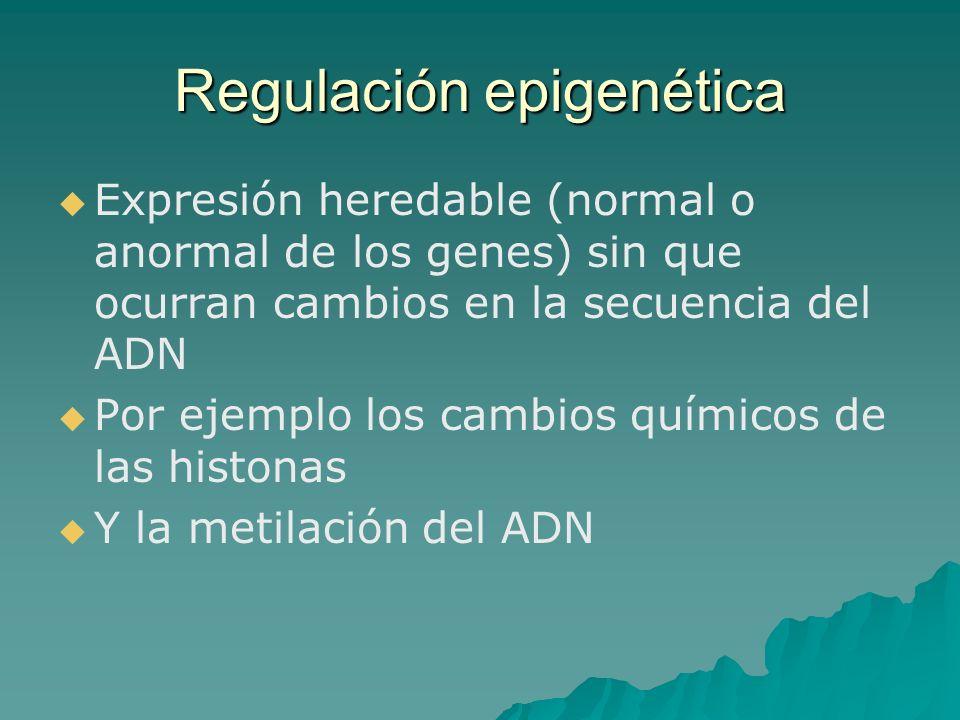 Regulación epigenética Expresión heredable (normal o anormal de los genes) sin que ocurran cambios en la secuencia del ADN Por ejemplo los cambios quí