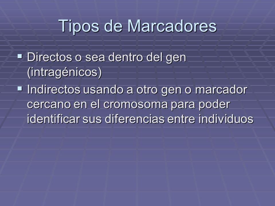 Tipos de Marcadores Directos o sea dentro del gen (intragénicos) Directos o sea dentro del gen (intragénicos) Indirectos usando a otro gen o marcador