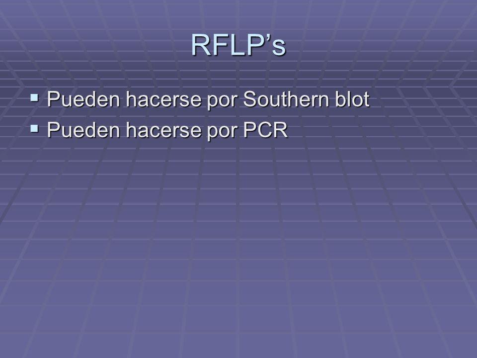 RFLPs Pueden hacerse por Southern blot Pueden hacerse por Southern blot Pueden hacerse por PCR Pueden hacerse por PCR