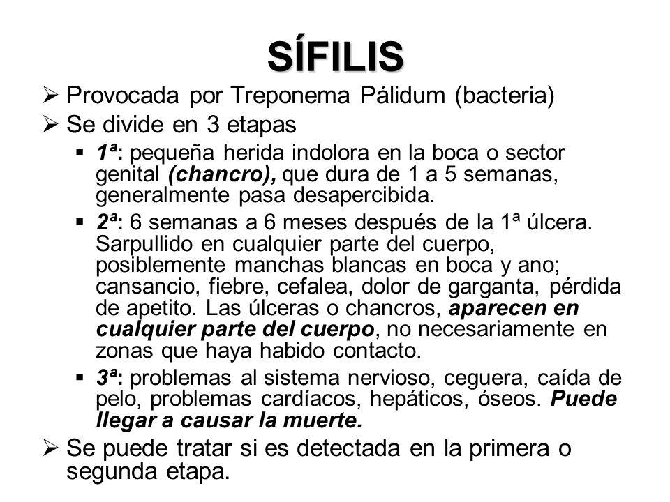 SÍFILIS Provocada por Treponema Pálidum (bacteria) Se divide en 3 etapas 1ª: pequeña herida indolora en la boca o sector genital (chancro), que dura d