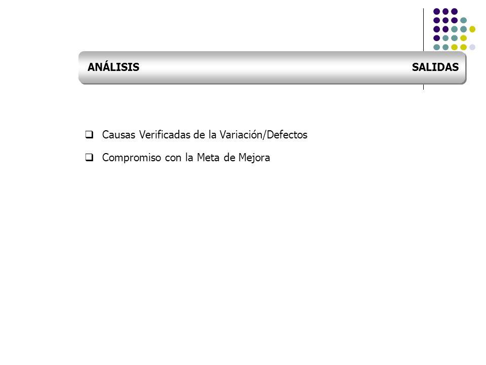 Causas Verificadas de la Variación/Defectos Compromiso con la Meta de Mejora ANÁLISIS SALIDAS