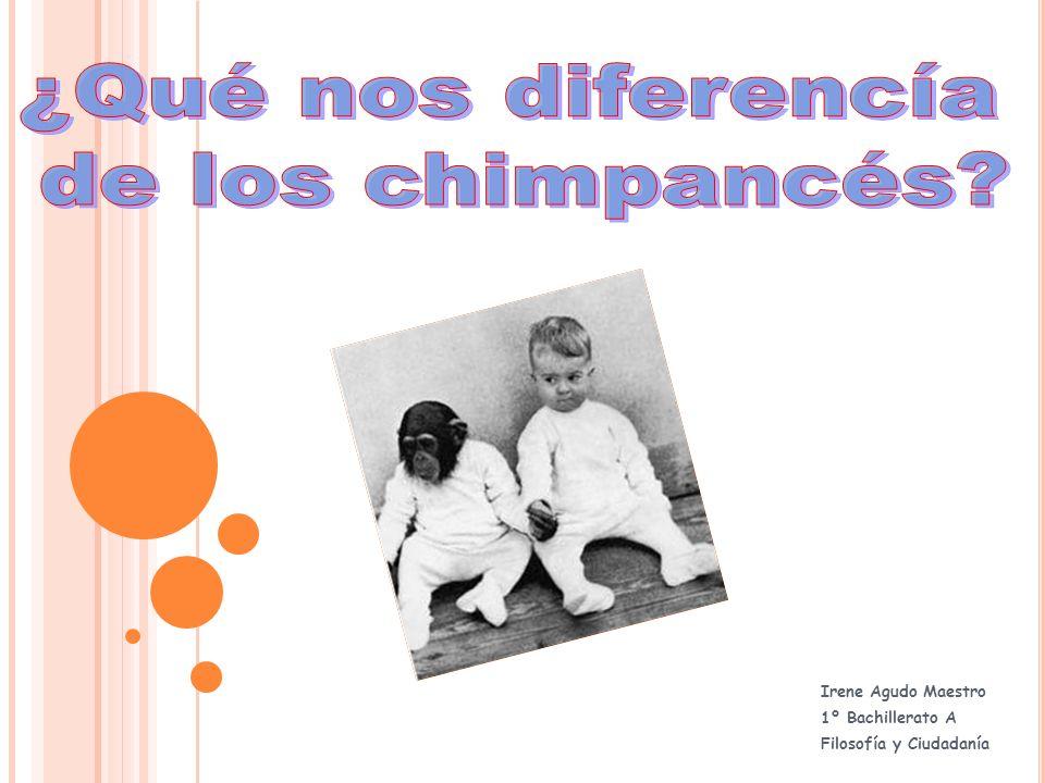 INTRODUCCIÓN El humanismo metafísico clasifica al chimpancé más cerca del gusano de tierra que del hombre, con el pretexto de que ni el uno ni el otro poseen nada de lo que es propio del hombre.