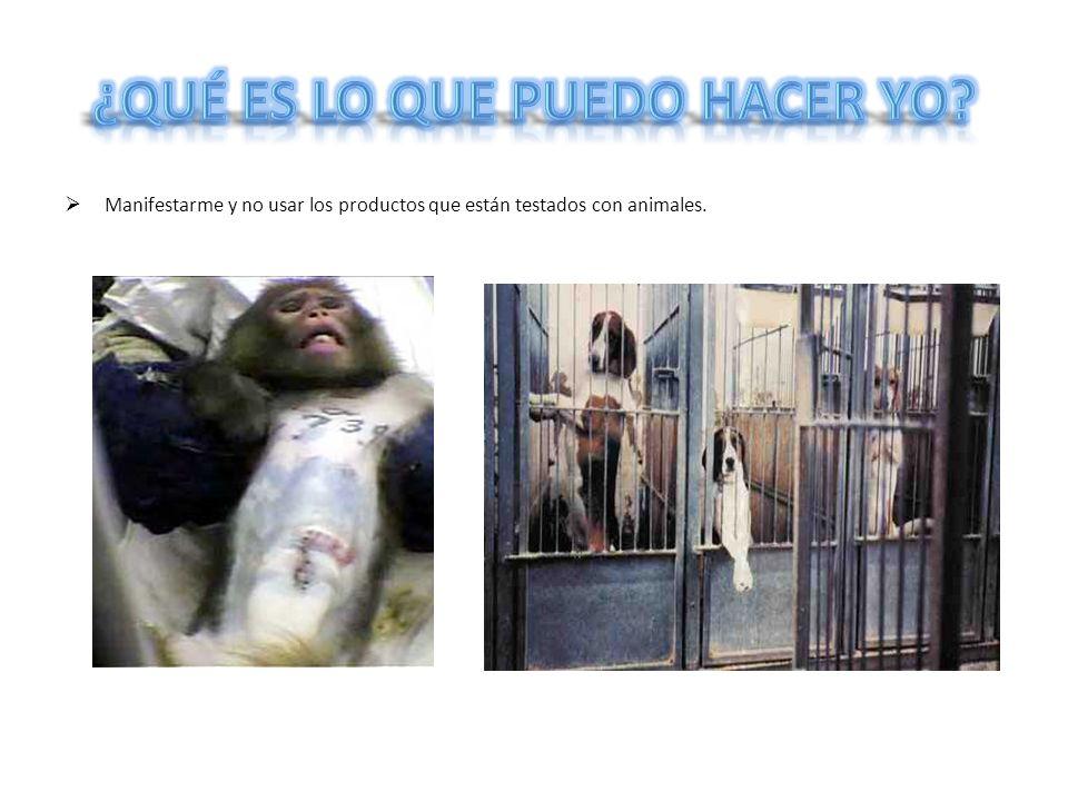 Manifestarme y no usar los productos que están testados con animales.