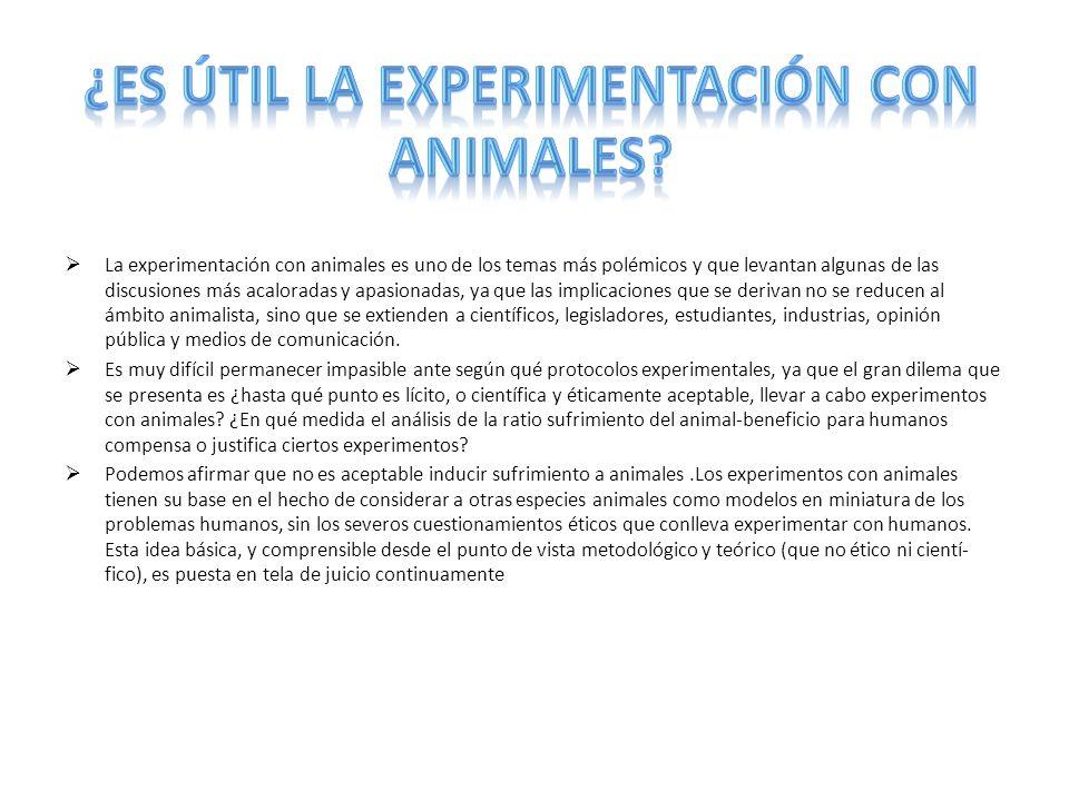 La experimentación con animales es uno de los temas más polémicos y que levantan algunas de las discusiones más acaloradas y apasionadas, ya que las i
