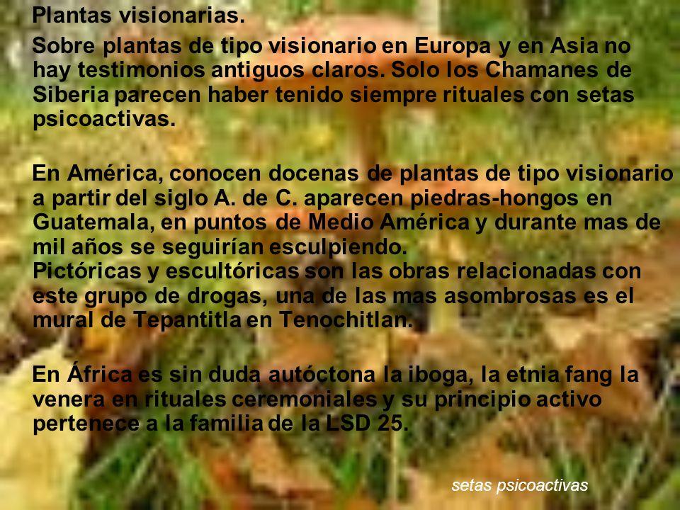 Plantas visionarias. Sobre plantas de tipo visionario en Europa y en Asia no hay testimonios antiguos claros. Solo los Chamanes de Siberia parecen hab