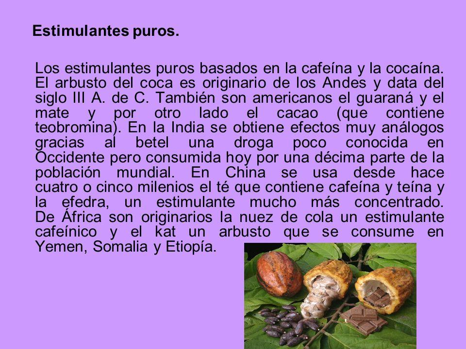 Estimulantes puros. Los estimulantes puros basados en la cafeína y la cocaína. El arbusto del coca es originario de los Andes y data del siglo III A.