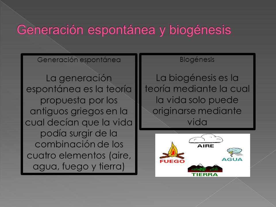 Generación espontánea La generación espontánea es la teoría propuesta por los antiguos griegos en la cual decían que la vida podía surgir de la combin
