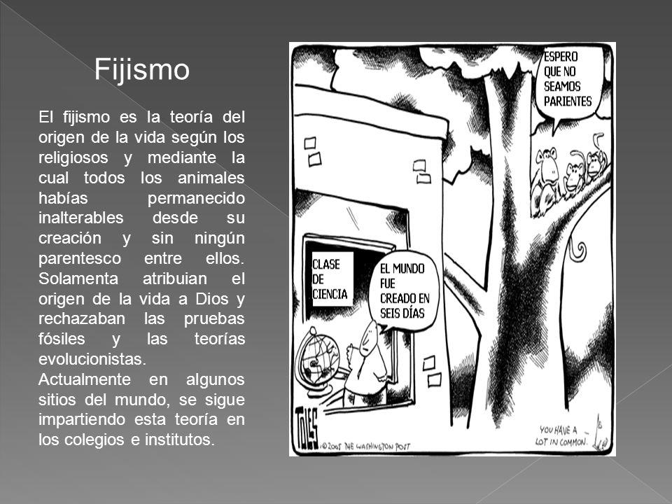 Fijismo El fijismo es la teoría del origen de la vida según los religiosos y mediante la cual todos los animales habías permanecido inalterables desde