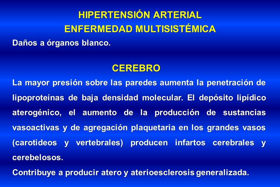 HIPERTENSIÓN ARTERIAL ENFERMEDAD MULTISISTÉMICA Daños a órganos blanco. CEREBRO La mayor presión sobre las paredes aumenta la penetración de lipoprote